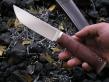 Нож Соболь 1-1 (х12мф, стаб карельская береза, мельхиор)