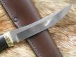 Нож Коготь (Elmax, граб, латунь)