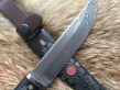 Нержавеющий дамаск 1 (Нерж. дамаск, граб, деревянные ножны, мельхиор)