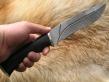 Нож ОНД-7 (Дамаск, граб, мельхиор)