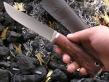 Нож НК-4 (Elmax, стаб. карельская береза, мельхиор)